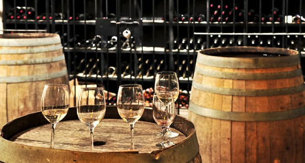 yarra valey wine tour